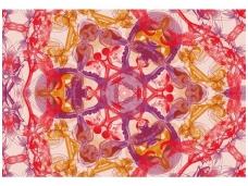 AP DIGITAL fototapetai 470015 Blossom Pentacle