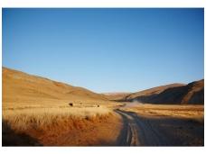 AP DIGITAL fototapetai 470051 Grassland