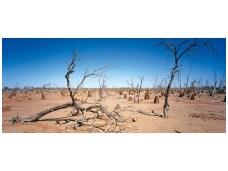 AP DIGITAL fototapetai 470060 Outback