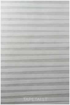 Dažomi tapetai 164808