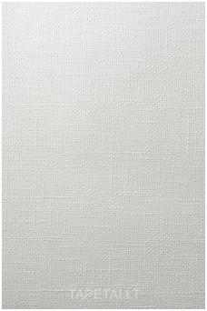 Dažomi tapetai 301-60