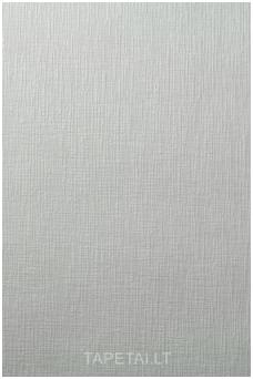 Dažomi tapetai 374-60