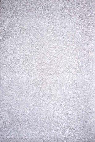 Dažomi tapetai 2106B