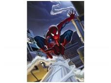 KOMAR fototapetai 1-424 Spider-Man Roof Top
