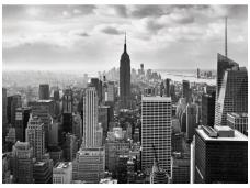 KOMAR fototapetai 8-323 NYC