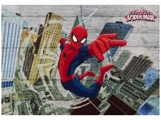 KOMAR fototapetai 8-467 Spider-Man concrete