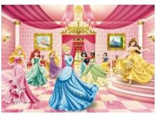 KOMAR fototapetai 8-476 Princess Ballroom