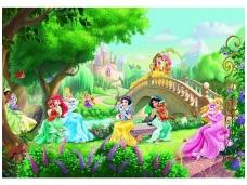KOMAR fototapetai 8-478 Princess Palace Pets