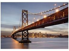 KOMAR fototapetai 8-733 Bay Bridge