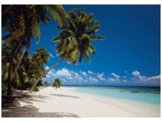 KOMAR fototapetai 8-240 Maldives