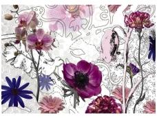 KOMAR fototapetai 8-887 Purple