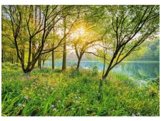 KOMAR fototapetai 8-524 Spring Lake