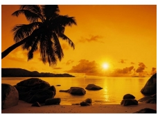 KOMAR fototapetai 8-316 Sunset