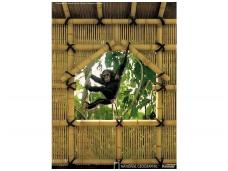 KOMAR fototapetai 4-505 Treehouse