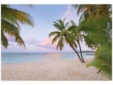 KOMAR fototapetai XXL4-528 Paradise morning