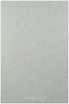 Tapetai 975-01