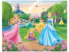 WALLTASTIC fototapetai Disney Princess