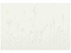 XXL1 fototapetai 036900 M